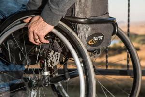 vežimėlis